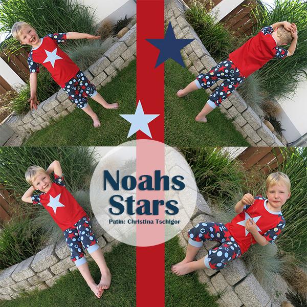 Namensgeber Noah in Noahs Stars von Swafing